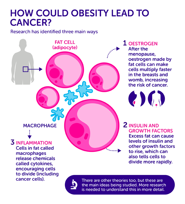 Myths and Reality of Breast Cancer: Lifestyle changes to reduce the risk of breast cancer